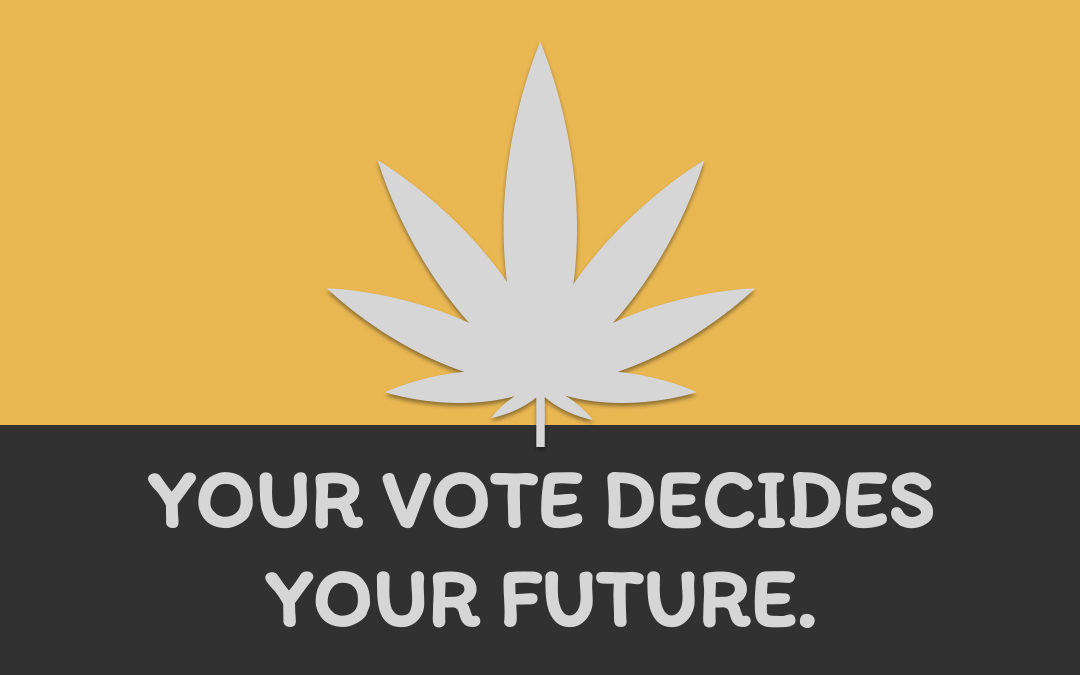 The NZ Cannabis Referendum: What You Need to Know